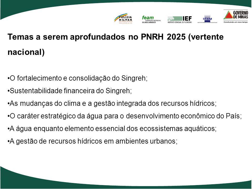 Temas a serem aprofundados no PNRH 2025 (vertente nacional) O fortalecimento e consolidação do Singreh; Sustentabilidade financeira do Singreh; As mudanças do clima e a gestão integrada dos recursos hídricos; O caráter estratégico da água para o desenvolvimento econômico do País; A água enquanto elemento essencial dos ecossistemas aquáticos; A gestão de recursos hídricos em ambientes urbanos;
