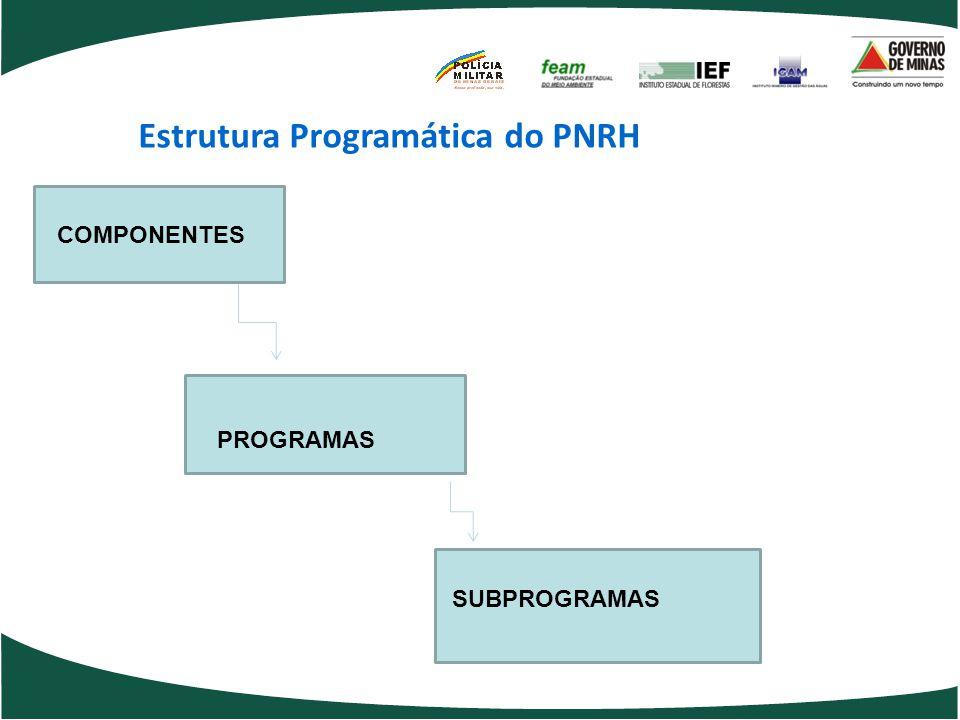 Estrutura Programática do PNRH COMPONENTES PROGRAMAS SUBPROGRAMAS