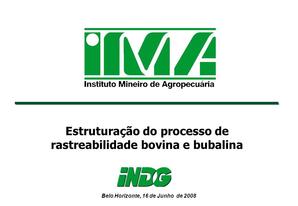 Belo Horizonte, 16 de Junho de 2008 Estruturação do processo de rastreabilidade bovina e bubalina