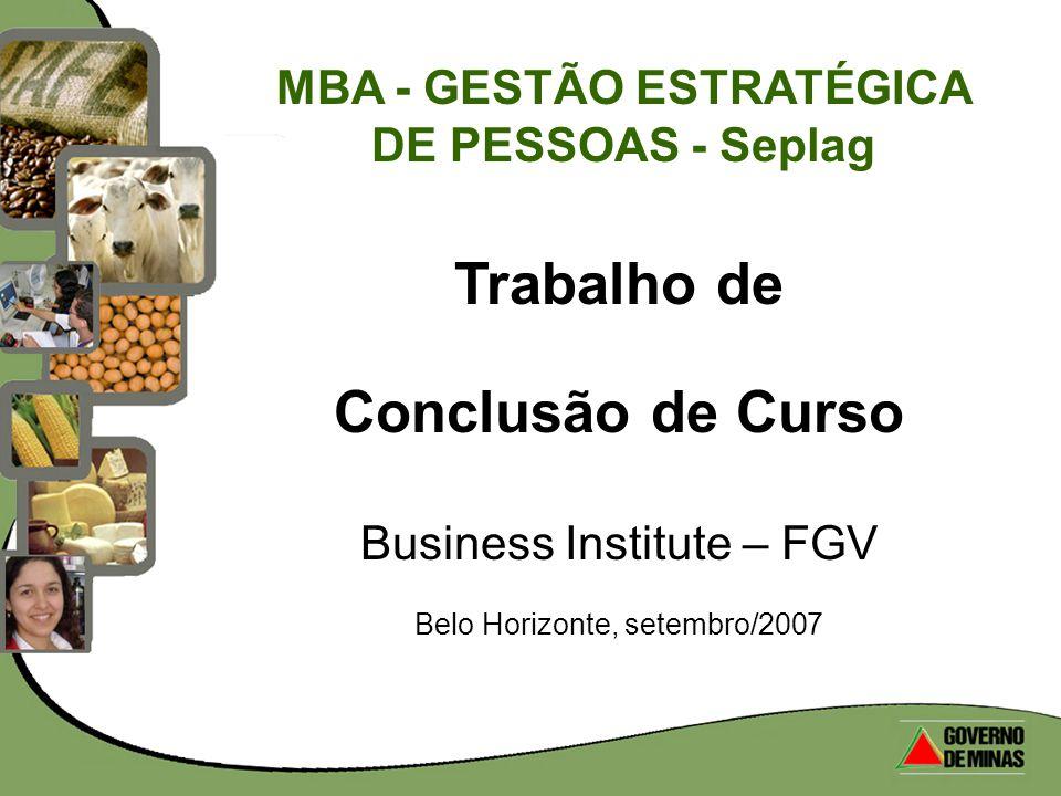 Trabalho de Conclusão de Curso Business Institute – FGV Belo Horizonte, setembro/2007 MBA - GESTÃO ESTRATÉGICA DE PESSOAS - Seplag