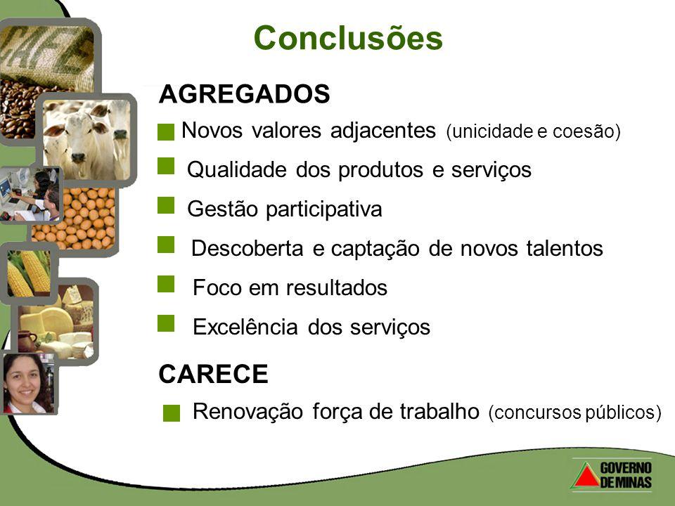 Conclusões AGREGADOS CARECE Excelência dos serviços Renovação força de trabalho (concursos públicos) Novos valores adjacentes (unicidade e coesão) Qua