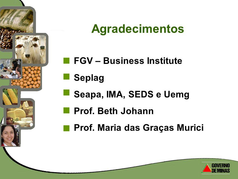 FGV – Business Institute Seplag Seapa, IMA, SEDS e Uemg Prof. Beth Johann Prof. Maria das Graças Murici Agradecimentos
