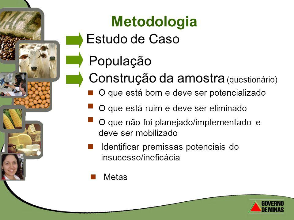 Metodologia Estudo de Caso População Construção da amostra (questionário) O que está bom e deve ser potencializado O que está ruim e deve ser eliminad
