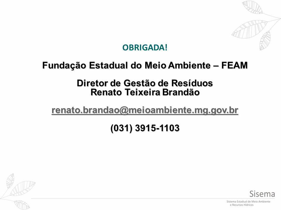 Fundação Estadual do Meio Ambiente – FEAM Diretor de Gestão de Resíduos Renato Teixeira Brandão renato.brandao@meioambiente.mg.gov.br (031) 3915-1103