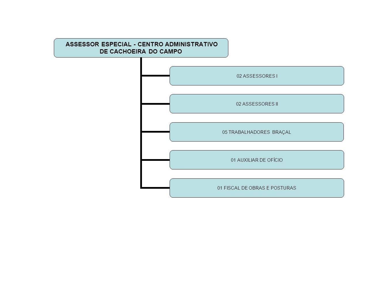 ASSESSOR ESPECIAL - CENTRO ADMINISTRATIVO DE CACHOEIRA DO CAMPO 02 ASSESSORES I 02 ASSESSORES II 05 TRABALHADORES BRAÇAL 01 AUXILIAR DE OFÍCIO 01 FISCAL DE OBRAS E POSTURAS