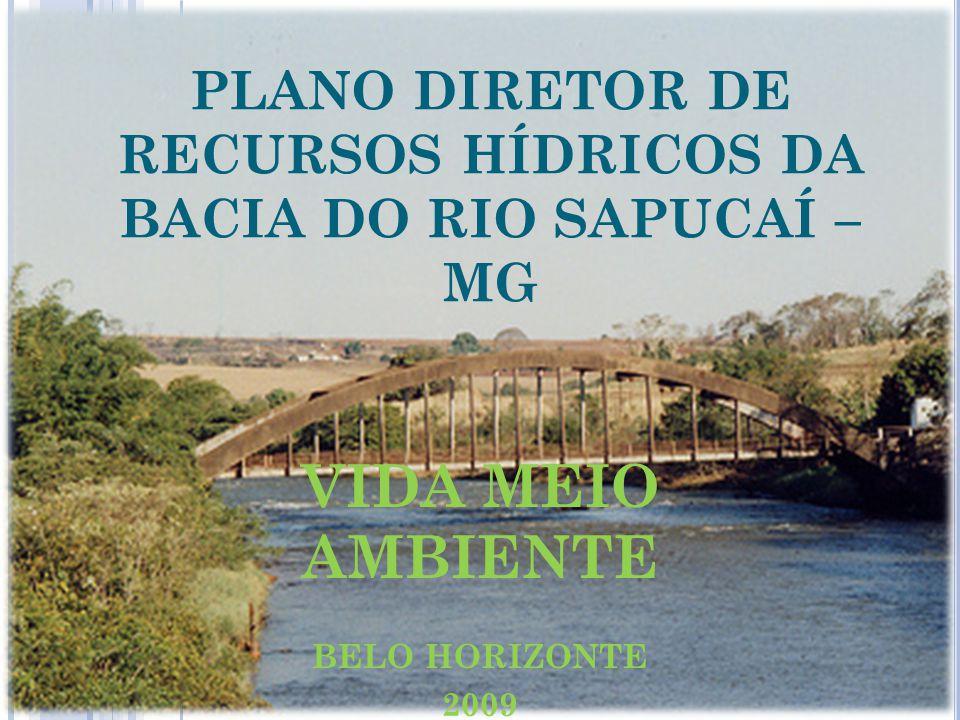 PLANO DIRETOR DE RECURSOS HÍDRICOS DA BACIA DO RIO SAPUCAÍ – MG VIDA MEIO AMBIENTE BELO HORIZONTE 2009