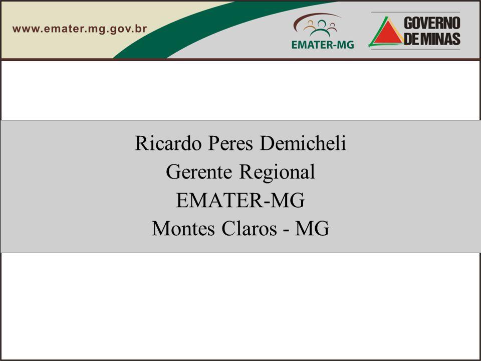 Ricardo Peres Demicheli Gerente Regional EMATER-MG Montes Claros - MG