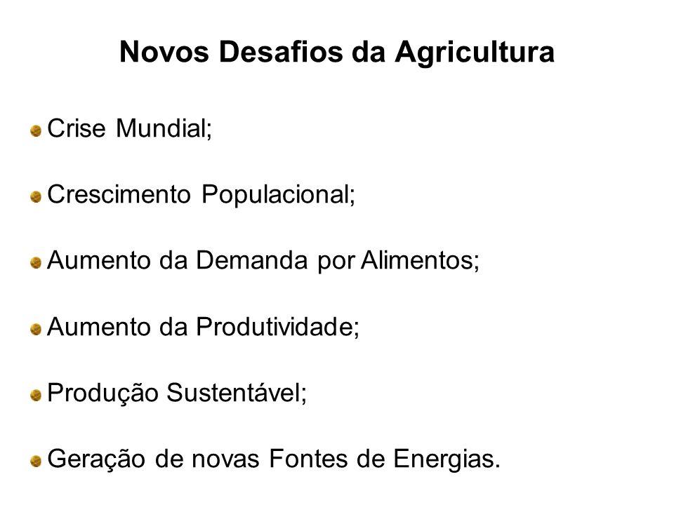 Novos Desafios da Agricultura Crise Mundial; Crescimento Populacional; Aumento da Demanda por Alimentos; Aumento da Produtividade; Produção Sustentável; Geração de novas Fontes de Energias.