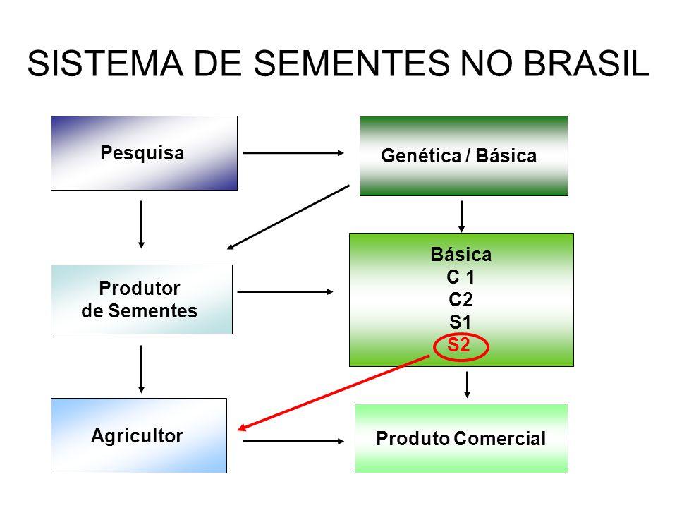 SISTEMA DE SEMENTES NO BRASIL Pesquisa Genética / Básica Básica C 1 C2 S1 S2 Produtor de Sementes Agricultor Produto Comercial