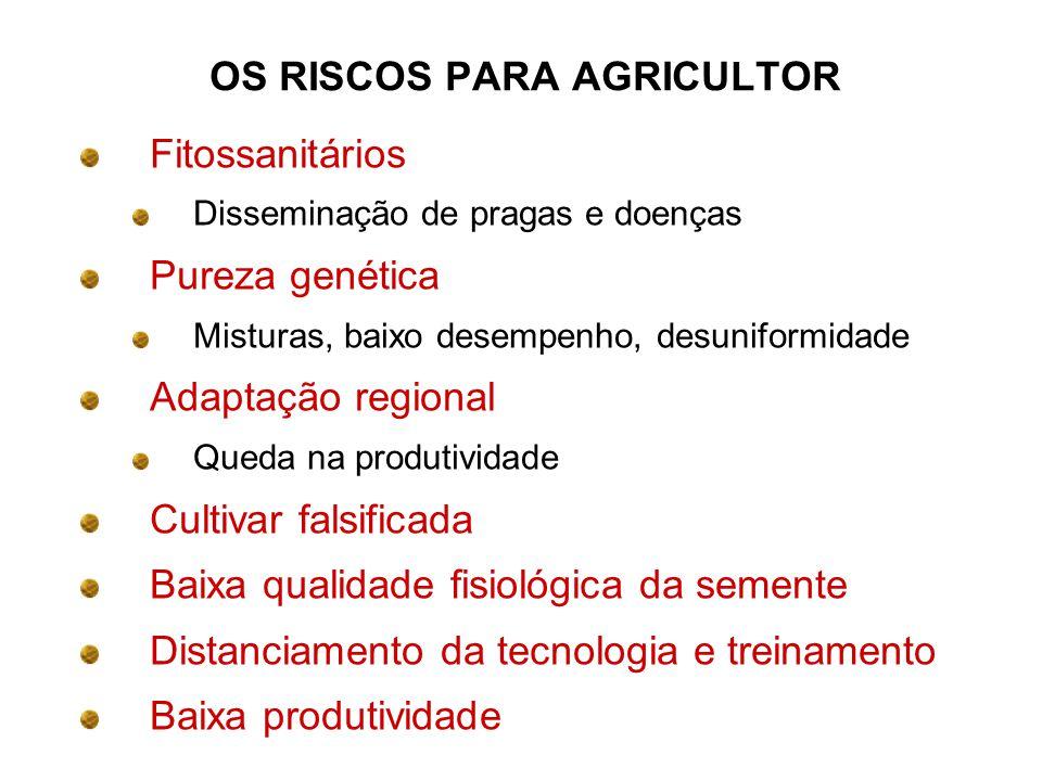 OS RISCOS PARA AGRICULTOR Fitossanitários Disseminação de pragas e doenças Pureza genética Misturas, baixo desempenho, desuniformidade Adaptação regio