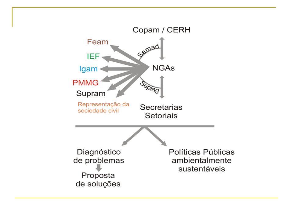 IMPORTÂNCIA DOS NGAS A promoção da governança ambiental, por meio da TRANSVERSALIDADE.