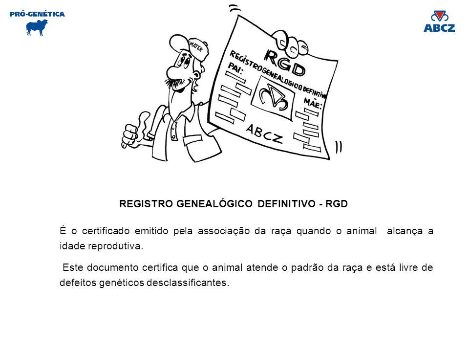 REGISTRO GENEALÓGICO DEFINITIVO - RGD É o certificado emitido pela associação da raça quando o animal alcança a idade reprodutiva. Este documento cert
