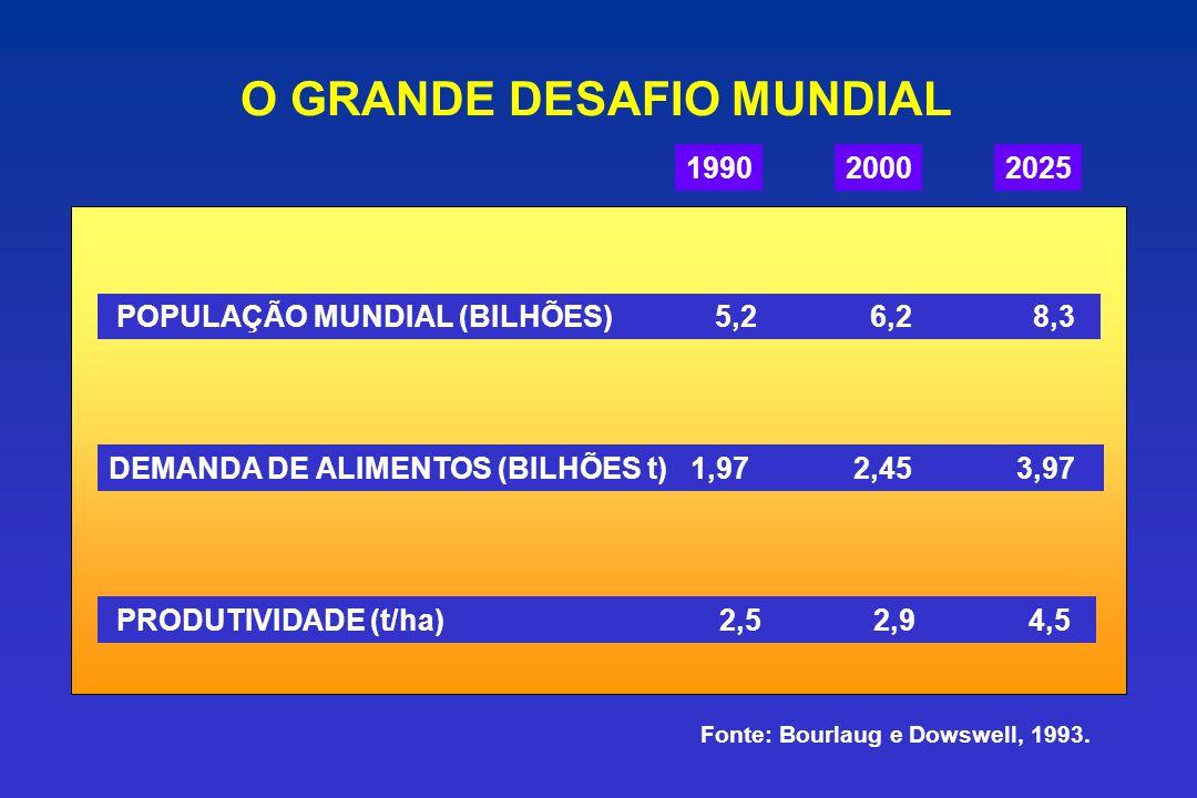 O GRANDE DESAFIO MUNDIAL 199020002025 POPULAÇÃO MUNDIAL (BILHÕES) 5,2 6,2 8,3 DEMANDA DE ALIMENTOS (BILHÕES t) 1,97 2,45 3,97 PRODUTIVIDADE (t/ha) 2,5