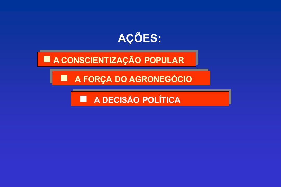 A DECISÃO POLÍTICA A FORÇA DO AGRONEGÓCIO A CONSCIENTIZAÇÃO POPULAR AÇÕES: