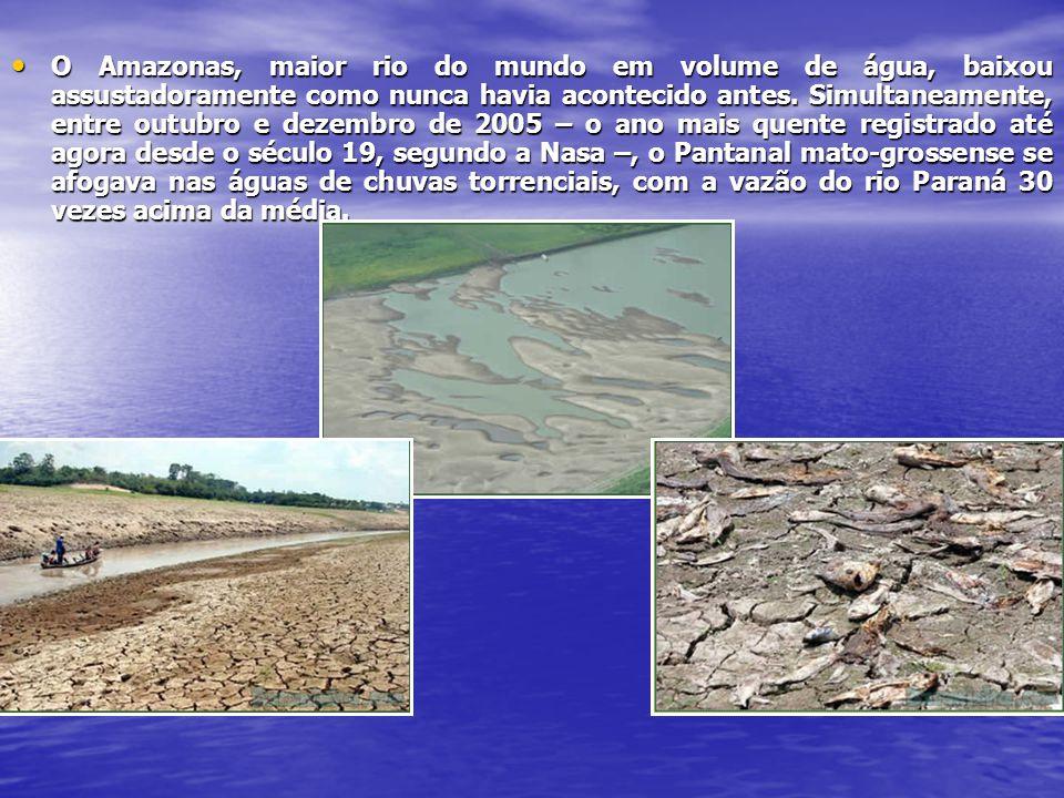 O Amazonas, maior rio do mundo em volume de água, baixou assustadoramente como nunca havia acontecido antes. Simultaneamente, entre outubro e dezembro