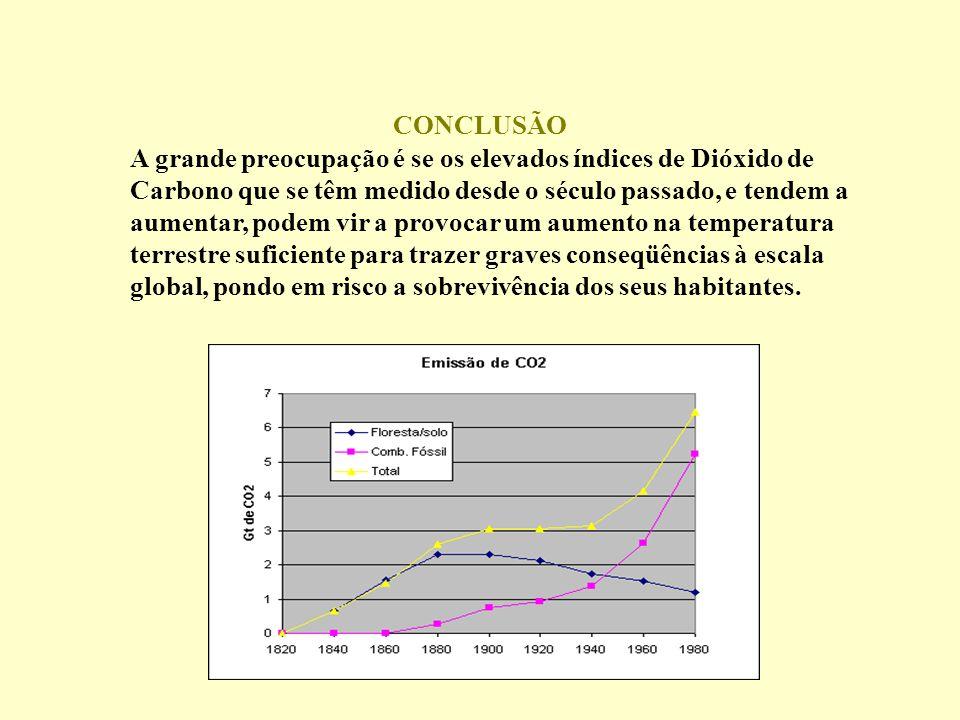 A grande preocupação é se os elevados índices de Dióxido de Carbono que se têm medido desde o século passado, e tendem a aumentar, podem vir a provoca