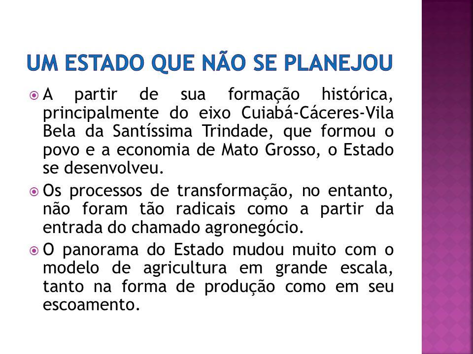 A partir de sua formação histórica, principalmente do eixo Cuiabá-Cáceres-Vila Bela da Santíssima Trindade, que formou o povo e a economia de Mato Grosso, o Estado se desenvolveu.