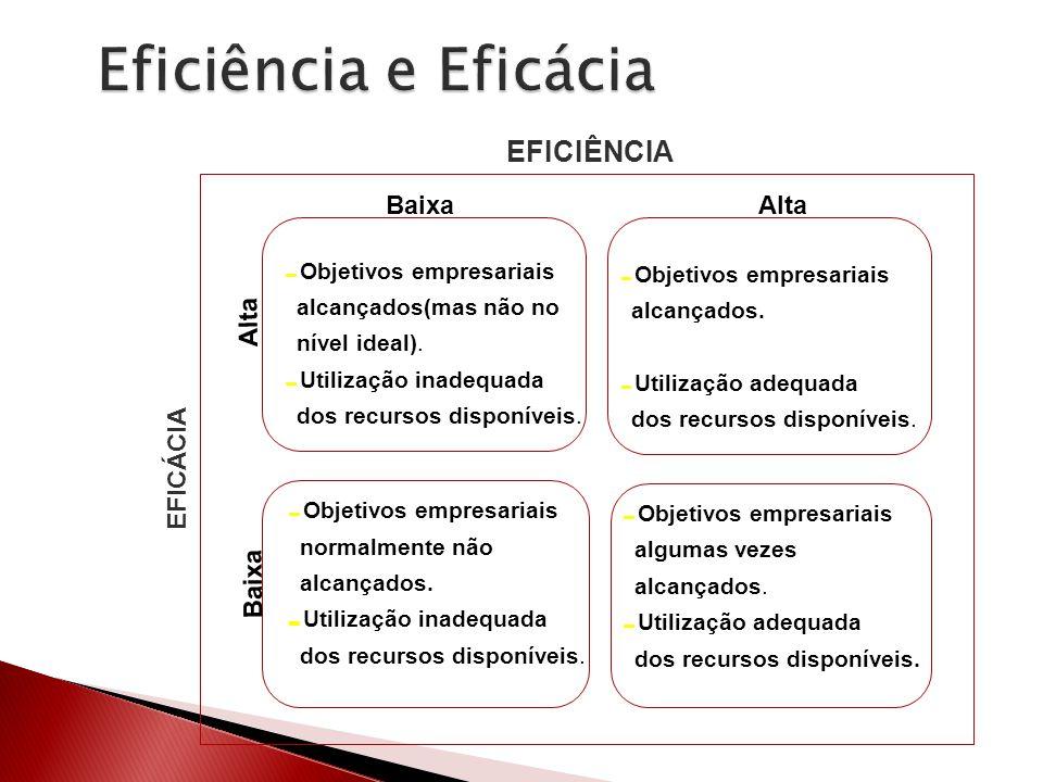 Objetivos empresariais alcançados(mas não no nível ideal). Utilização inadequada dos recursos disponíveis. Objetivos empresariais alcançados. Utilizaç