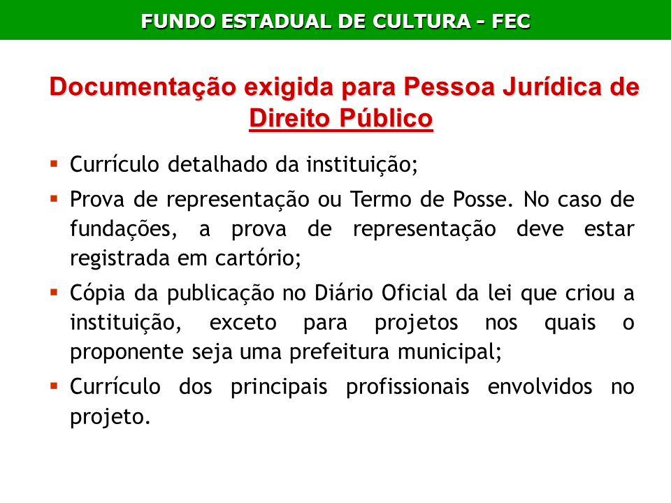 Documentação exigida para Pessoa Jurídica de Direito Público Documentação exigida para Pessoa Jurídica de Direito Público Currículo detalhado da insti