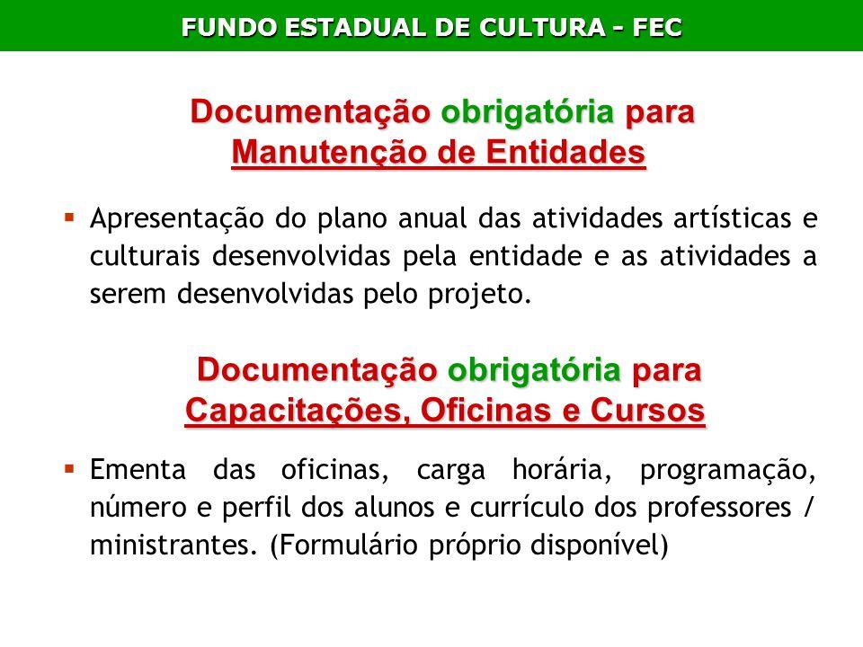 FUNDO ESTADUAL DE CULTURA - FEC Documentação obrigatória para Manutenção de Entidades Documentação obrigatória para Manutenção de Entidades Apresentaç