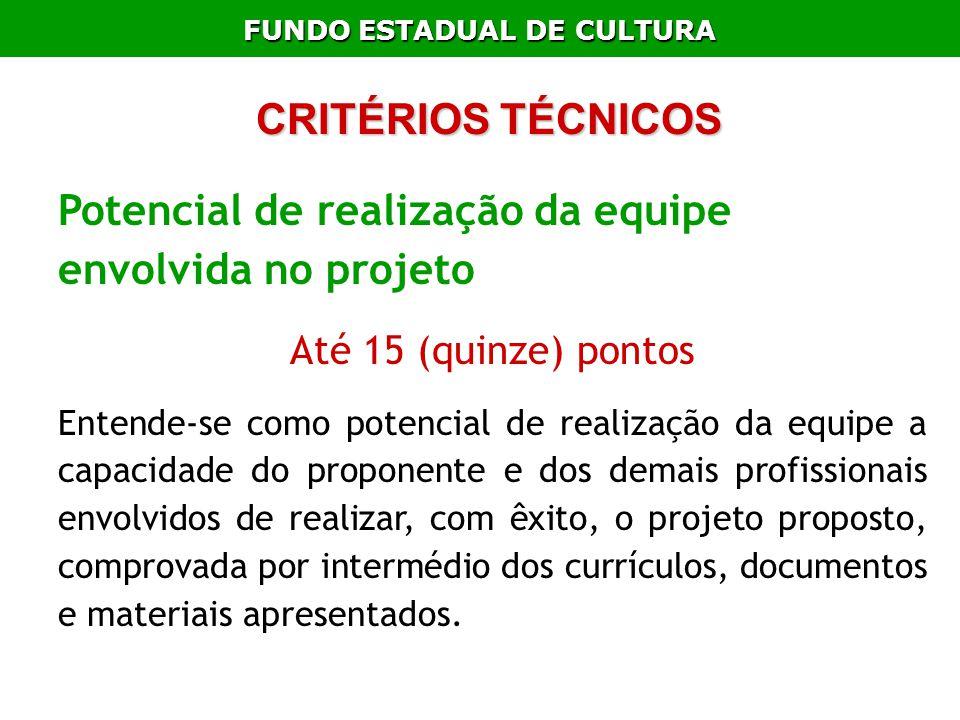 FUNDO ESTADUAL DE CULTURA Potencial de realização da equipe envolvida no projeto Até 15 (quinze) pontos Entende-se como potencial de realização da equ
