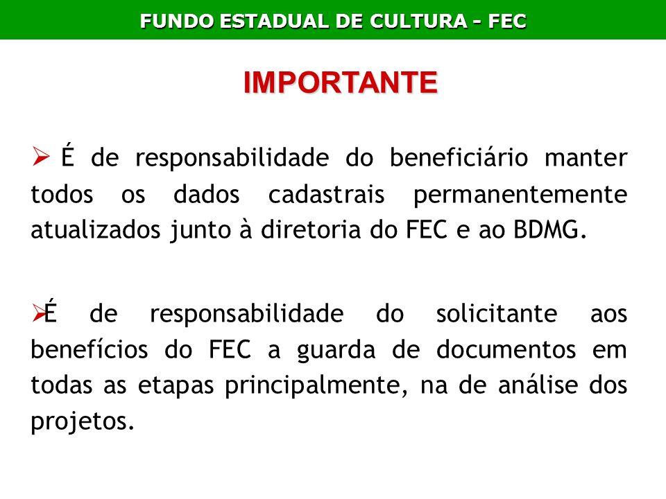 FUNDO ESTADUAL DE CULTURA - FEC IMPORTANTE É de responsabilidade do beneficiário manter todos os dados cadastrais permanentemente atualizados junto à