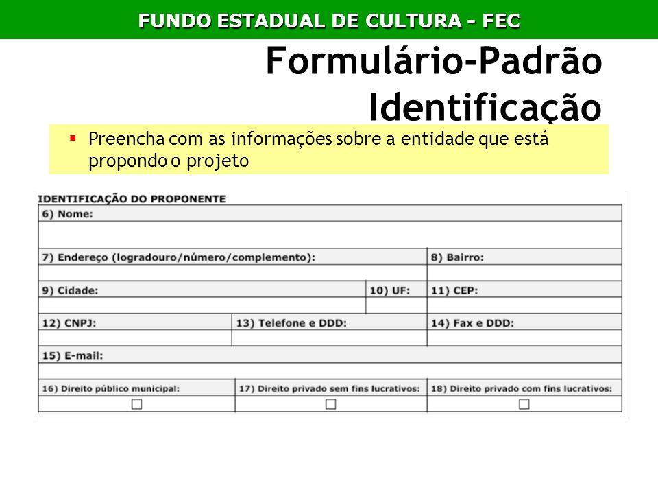 Formulário-Padrão Identificação Preencha com as informações sobre a entidade que está propondo o projeto FUNDO ESTADUAL DE CULTURA - FEC