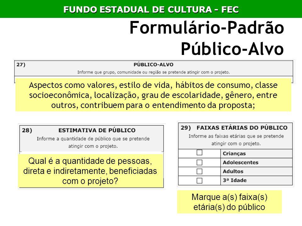 Formulário-Padrão Público-Alvo Aspectos como valores, estilo de vida, hábitos de consumo, classe socioeconômica, localização, grau de escolaridade, gê
