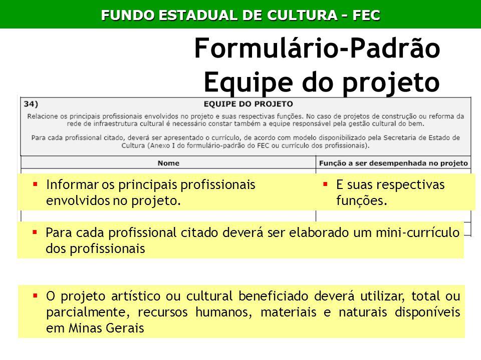 Formulário-Padrão Equipe do projeto Informar os principais profissionais envolvidos no projeto. E suas respectivas funções. Para cada profissional cit
