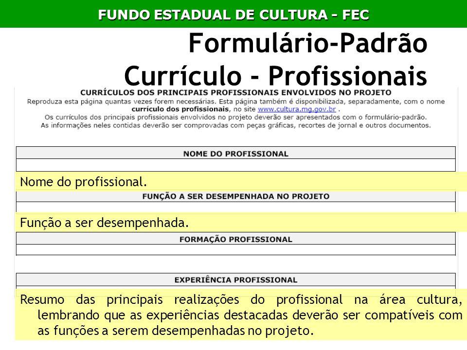 Formulário-Padrão Currículo - Profissionais Nome do profissional. Função a ser desempenhada. Resumo das principais realizações do profissional na área