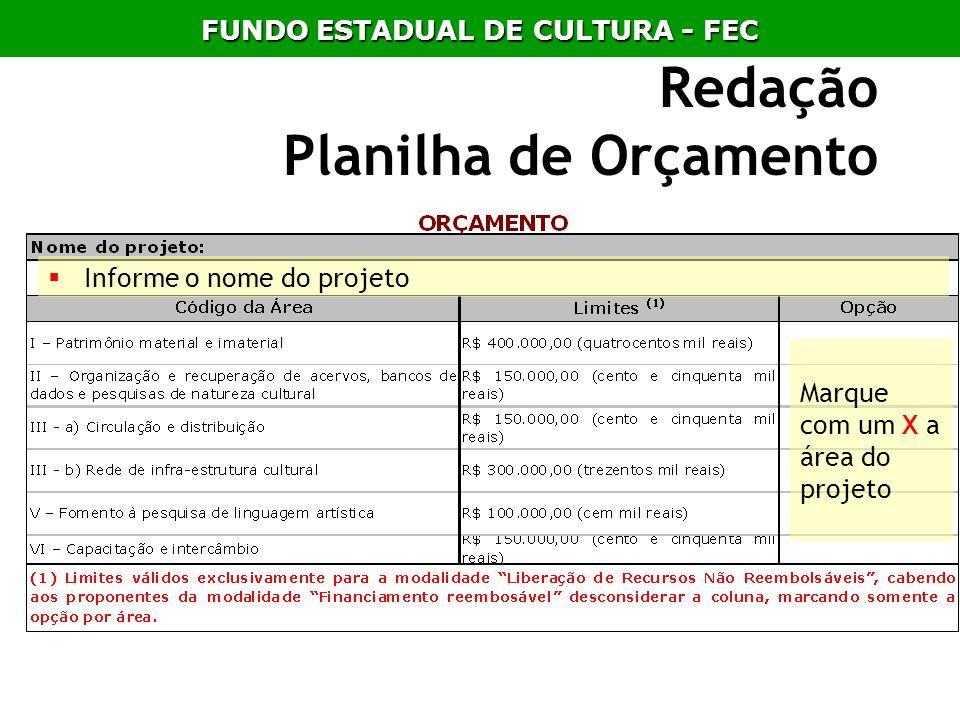 Redação Planilha de Orçamento Informe o nome do projeto Marque com um X a área do projeto FUNDO ESTADUAL DE CULTURA - FEC