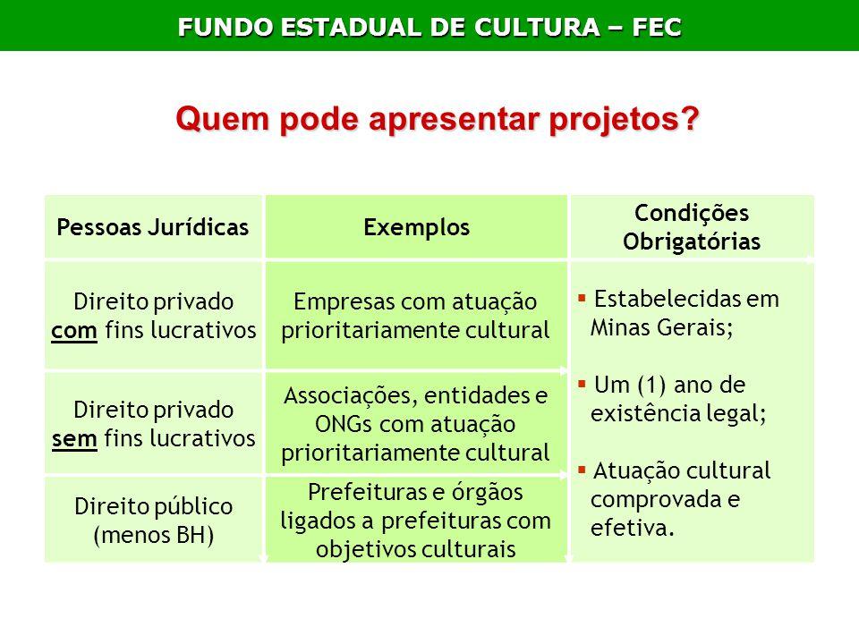 FUNDO ESTADUAL DE CULTURA – FEC Quem pode apresentar projetos? Pessoas JurídicasExemplos Condições Obrigatórias Direito privado com fins lucrativos Em