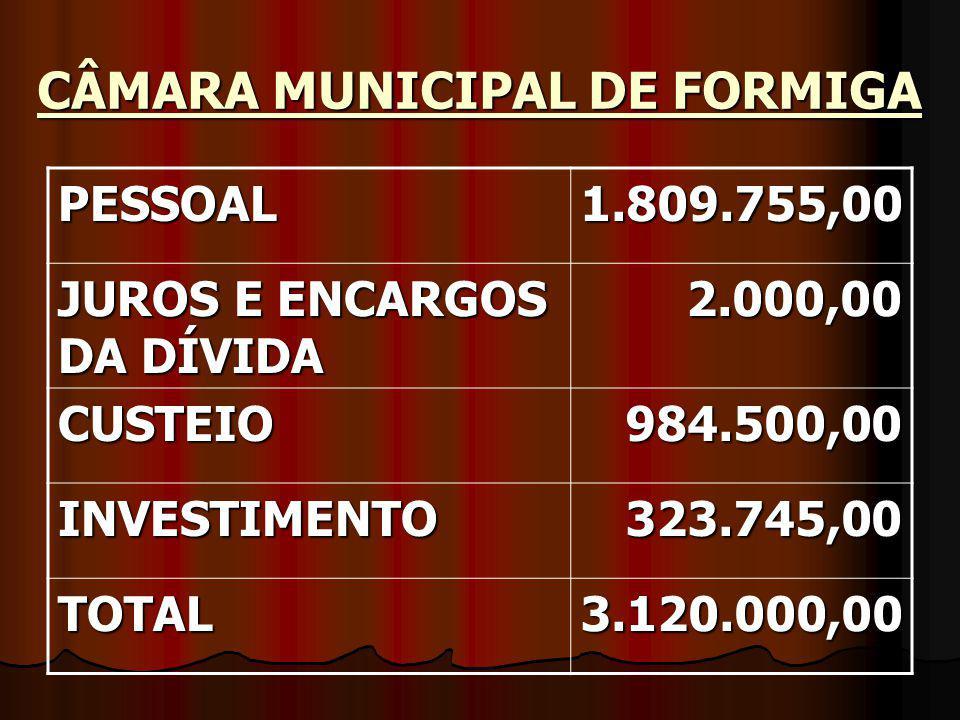 CÂMARA MUNICIPAL DE FORMIGA PESSOAL1.809.755,00 JUROS E ENCARGOS DA DÍVIDA 2.000,00 CUSTEIO984.500,00 INVESTIMENTO323.745,00 TOTAL3.120.000,00