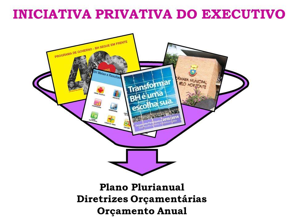 INICIATIVA PRIVATIVA DO EXECUTIVO Plano Plurianual Diretrizes Orçamentárias Orçamento Anual