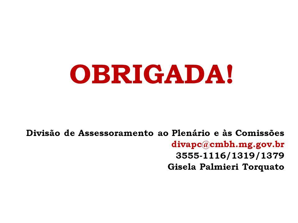 OBRIGADA! Divisão de Assessoramento ao Plenário e às Comissões divapc@cmbh.mg.gov.br 3555-1116/1319/1379 Gisela Palmieri Torquato