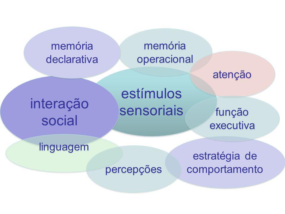 estímulos sensoriais interação social estratégia de comportamento memória operacional atenção função executiva linguagem percepções memória declarativ