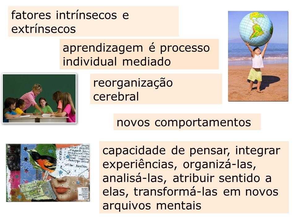 aprendizagem é processo individual mediado fatores intrínsecos e extrínsecos capacidade de pensar, integrar experiências, organizá-las, analisá-las, a