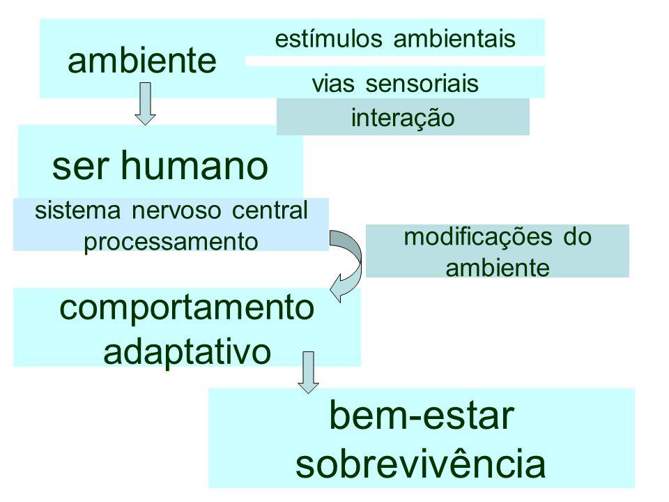 ambiente comportamento adaptativo modificações do ambiente estímulos ambientais ser humano interação sistema nervoso central processamento bem-estar s