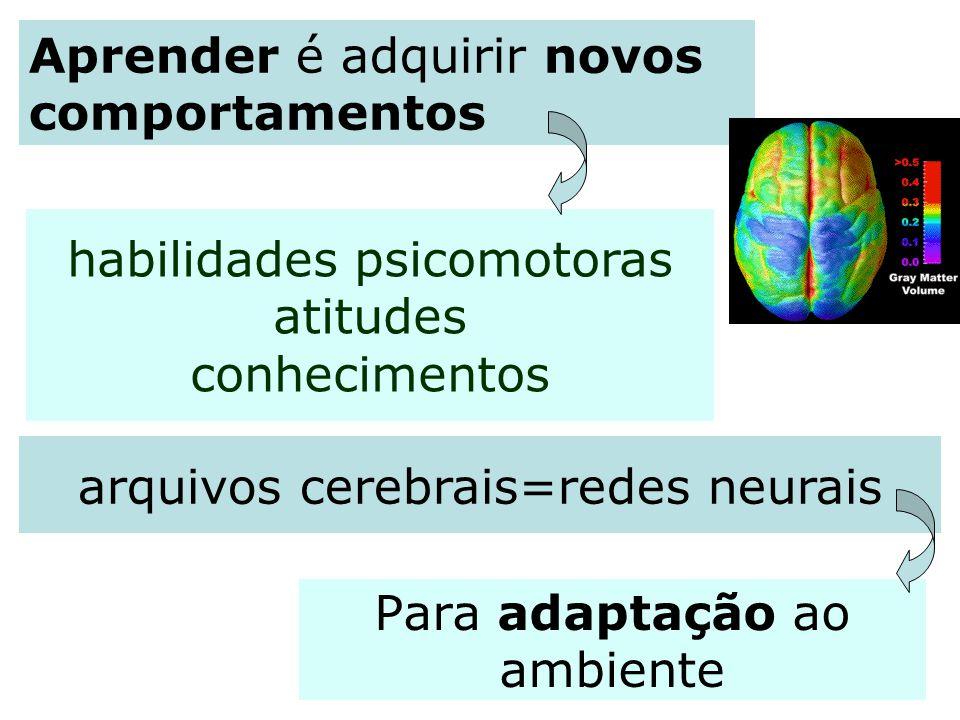 Para adaptação ao ambiente Aprender é adquirir novos comportamentos arquivos cerebrais=redes neurais habilidades psicomotoras atitudes conhecimentos