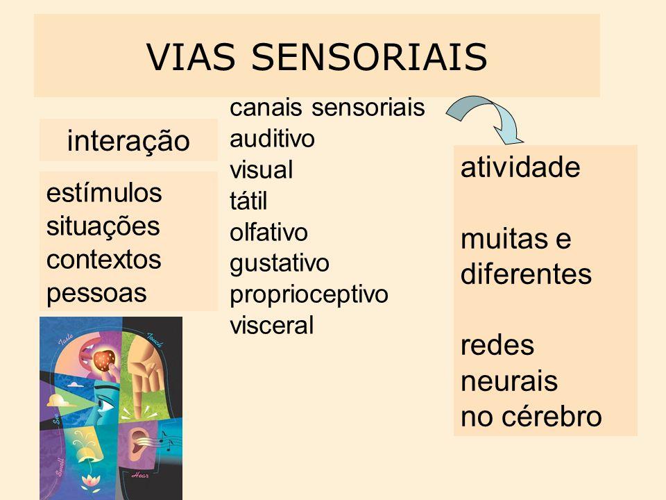 interação VIAS SENSORIAIS estímulos situações contextos pessoas canais sensoriais auditivo visual tátil olfativo gustativo proprioceptivo visceral ati