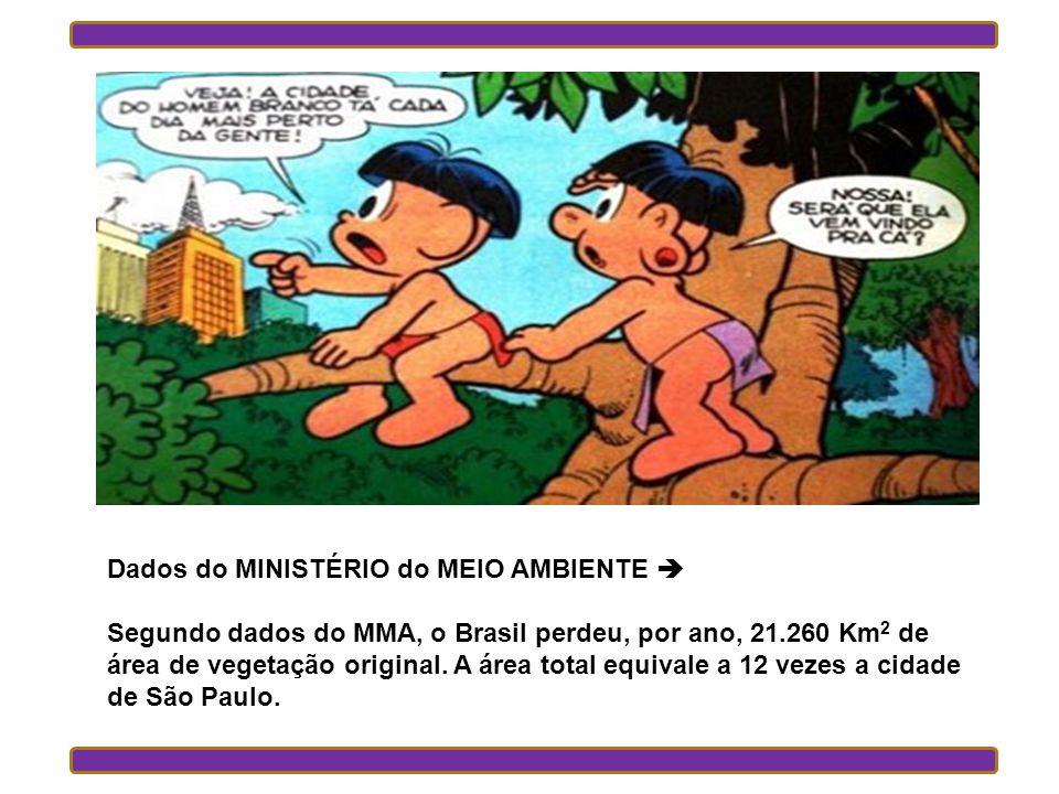 Dados do MINISTÉRIO do MEIO AMBIENTE Segundo dados do MMA, o Brasil perdeu, por ano, 21.260 Km 2 de área de vegetação original.