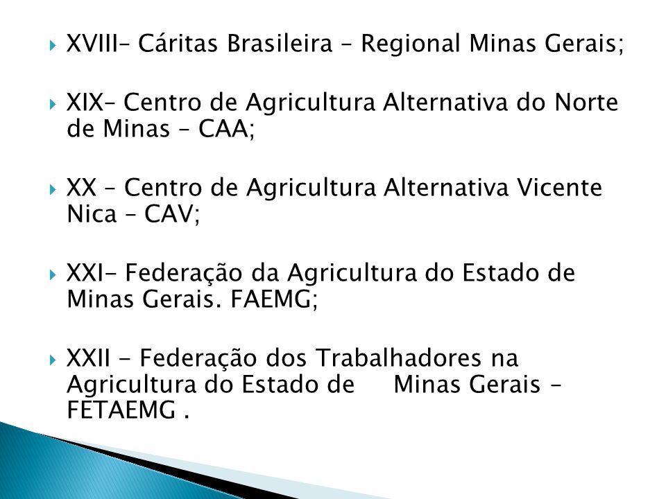 XVIII– Cáritas Brasileira – Regional Minas Gerais; XIX– Centro de Agricultura Alternativa do Norte de Minas – CAA; XX – Centro de Agricultura Alternativa Vicente Nica – CAV; XXI- Federação da Agricultura do Estado de Minas Gerais.