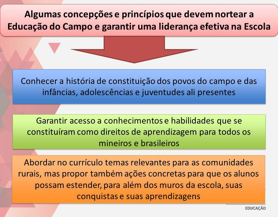 Algumas concepções e princípios que devem nortear a Educação do Campo e garantir uma liderança efetiva na Escola Conhecer a história de constituição d