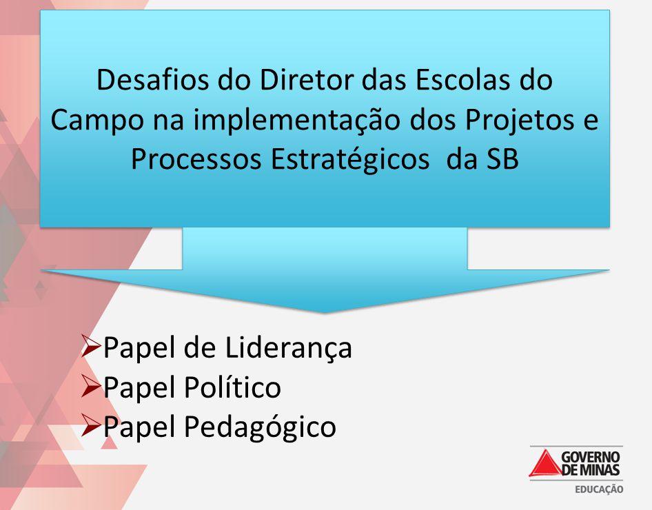 Desafios do Diretor das Escolas do Campo na implementação dos Projetos e Processos Estratégicos da SB Papel de Liderança Papel Político Papel Pedagógi