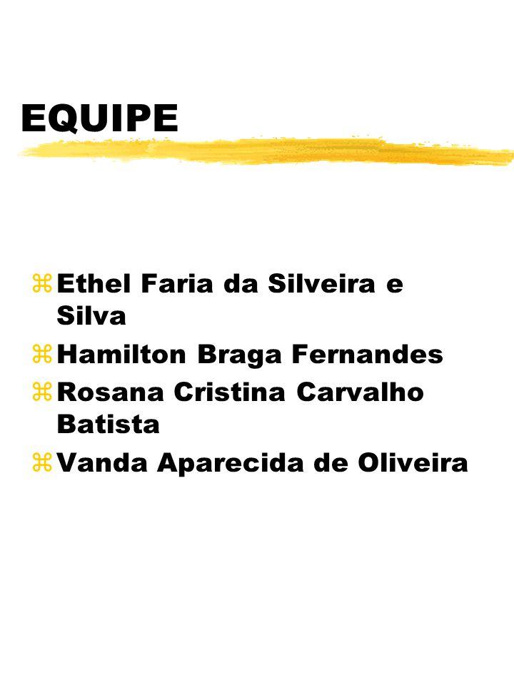EQUIPE zEthel Faria da Silveira e Silva zHamilton Braga Fernandes zRosana Cristina Carvalho Batista zVanda Aparecida de Oliveira