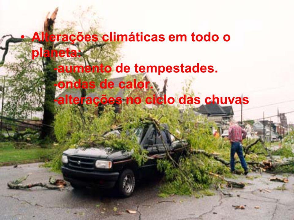 Alterações climáticas em todo o planeta: -aumento de tempestades. -ondas de calor. -alterações no ciclo das chuvas