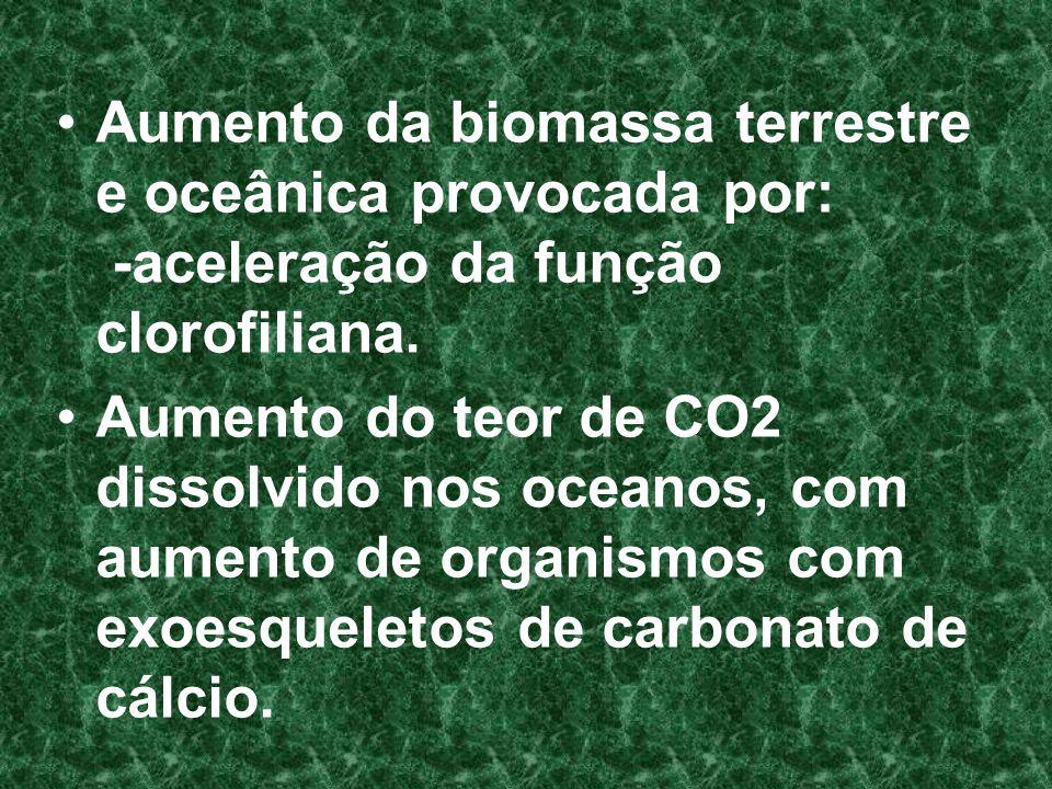 Aumento da biomassa terrestre e oceânica provocada por: -aceleração da função clorofiliana. Aumento do teor de CO2 dissolvido nos oceanos, com aumento