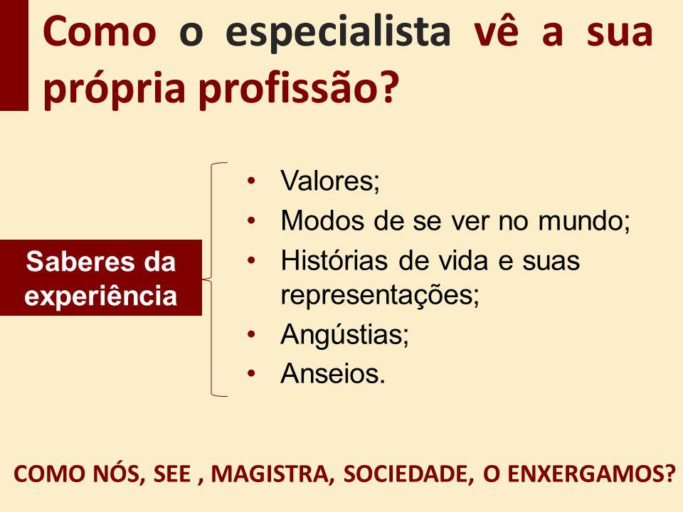 Como o especialista vê a sua própria profissão? COMO NÓS, SEE, MAGISTRA, SOCIEDADE, O ENXERGAMOS? Valores; Modos de se ver no mundo; Histórias de vida