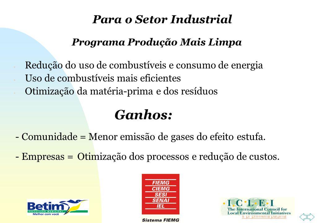 Ir p/ primeira página - Redução do uso de combustíveis e consumo de energia - Uso de combustíveis mais eficientes - Otimização da matéria-prima e dos