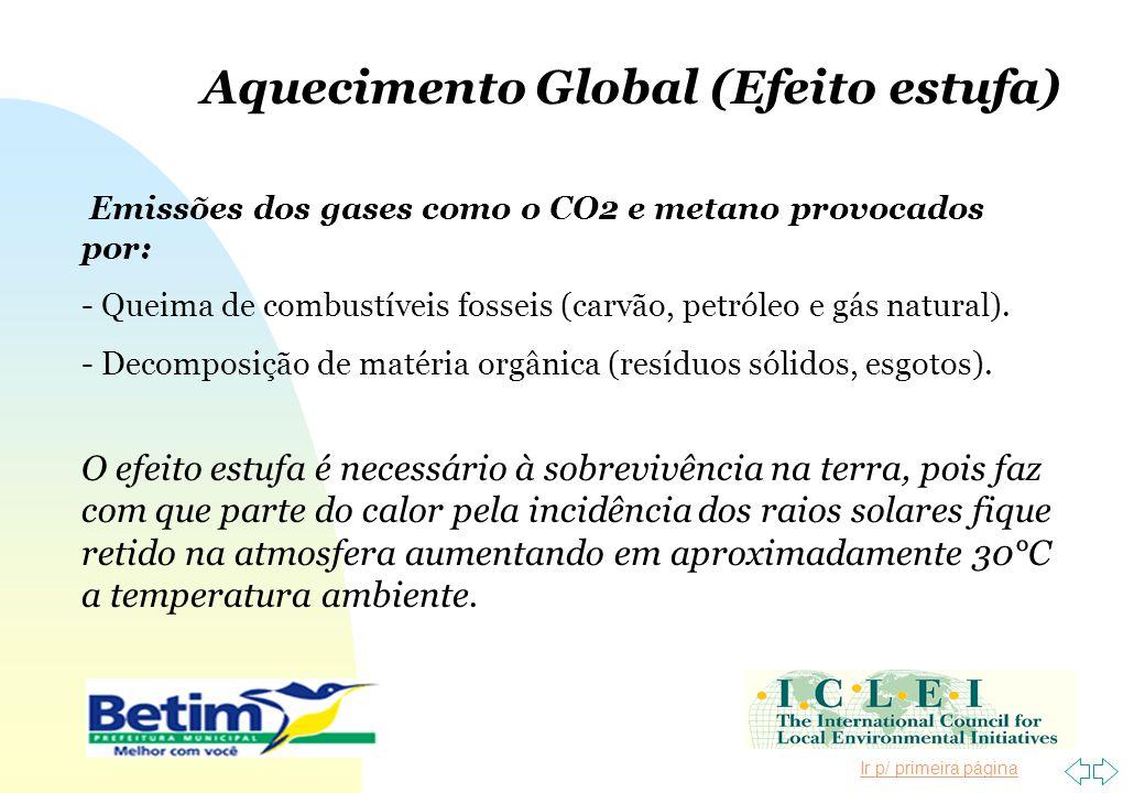 Ir p/ primeira página Aquecimento Global (Efeito estufa) Emissões dos gases como o CO2 e metano provocados por: - Queima de combustíveis fosseis (carv